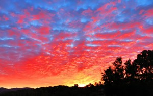 Sunrise_1081